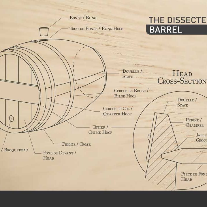 acs-barrels-the-dissected-barrel