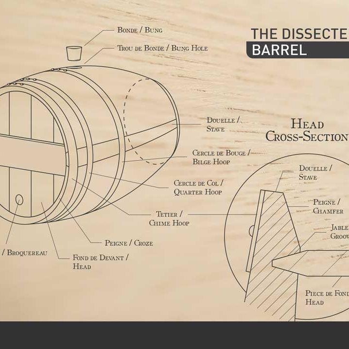 acs-barrels-the-dissected-barrel